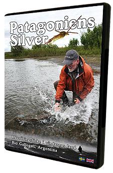 Patagoniens Silver